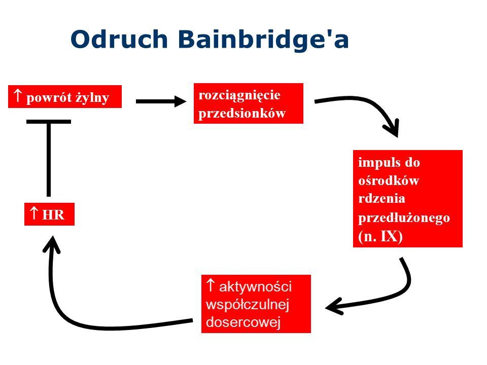 Odruch Bainbridge a rozciągnięcie przedsionków  powrót żylny