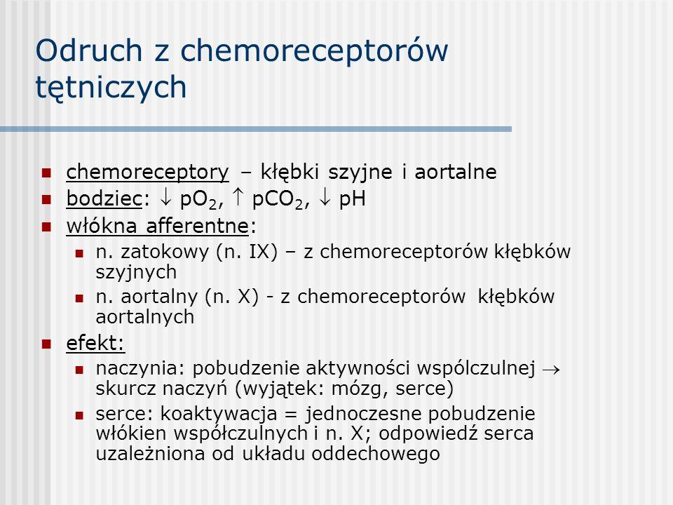 Odruch z chemoreceptorów tętniczych