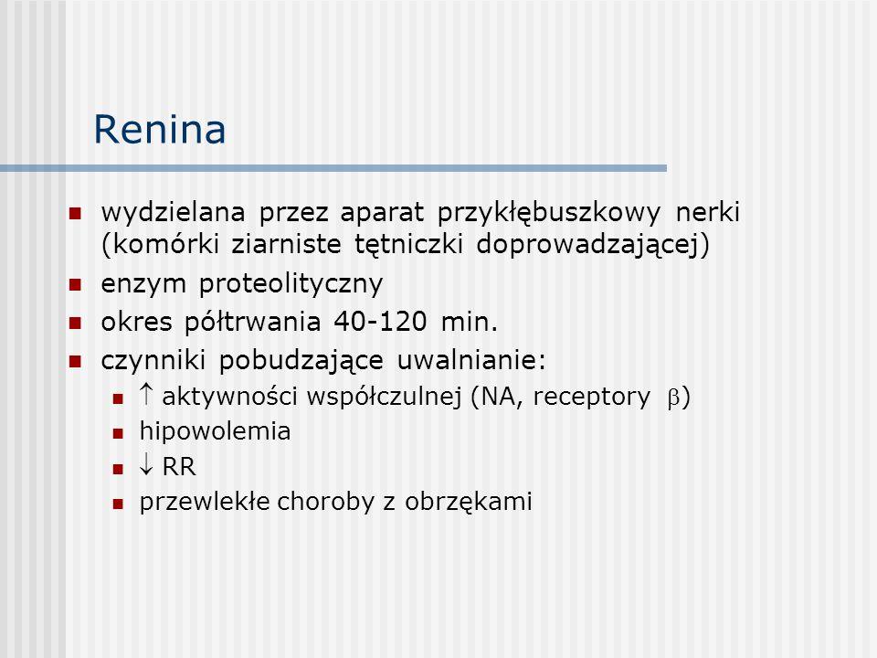 Renina wydzielana przez aparat przykłębuszkowy nerki (komórki ziarniste tętniczki doprowadzającej) enzym proteolityczny.