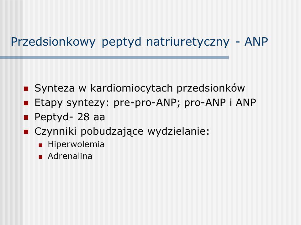 Przedsionkowy peptyd natriuretyczny - ANP