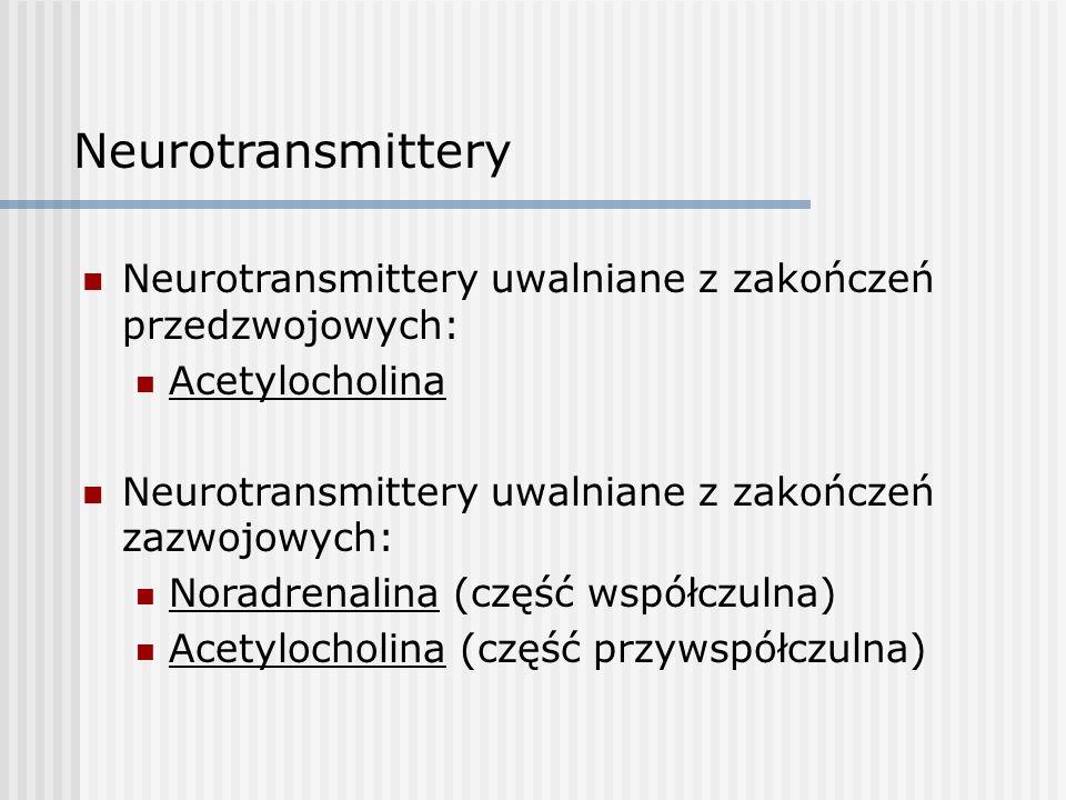 Neurotransmittery Neurotransmittery uwalniane z zakończeń przedzwojowych: Acetylocholina. Neurotransmittery uwalniane z zakończeń zazwojowych: