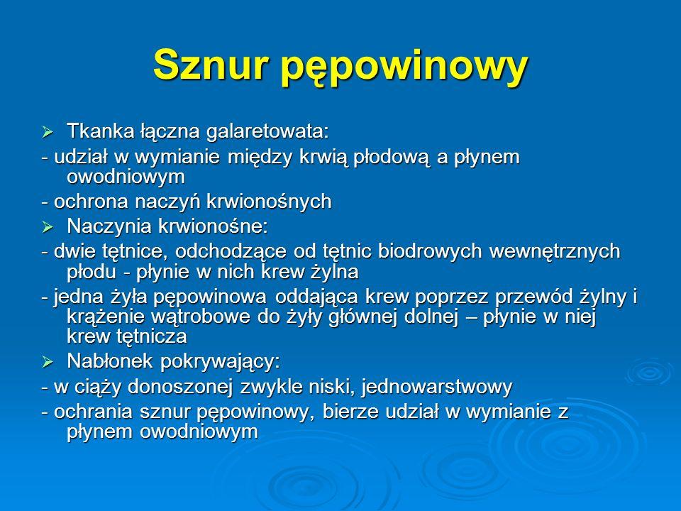 Sznur pępowinowy Tkanka łączna galaretowata: