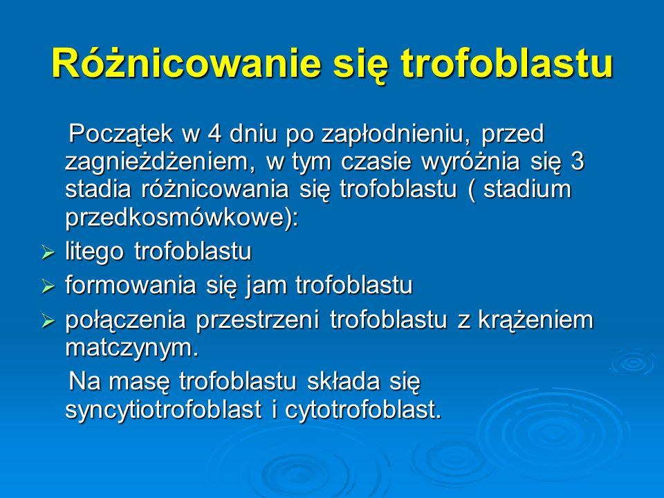 Różnicowanie się trofoblastu