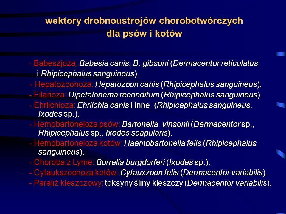 wektory drobnoustrojów chorobotwórczych
