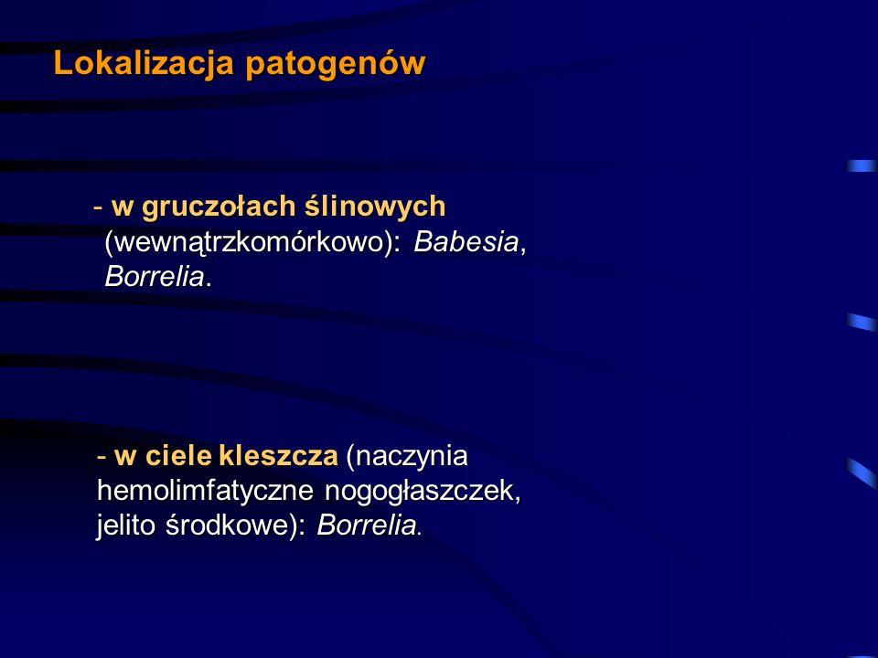 Lokalizacja patogenów