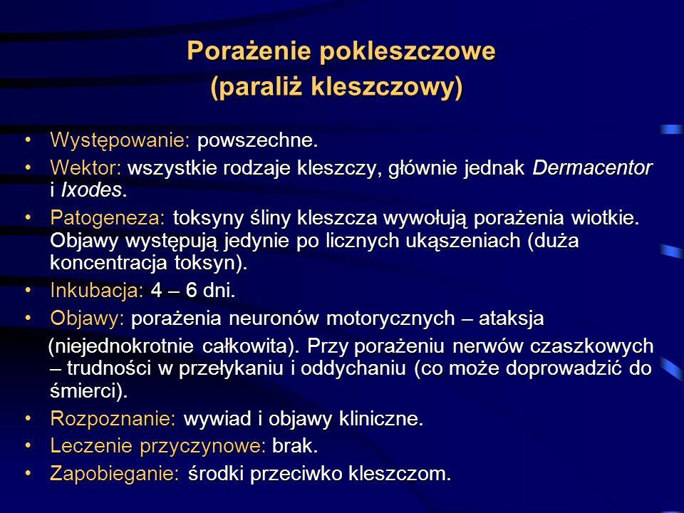 Porażenie pokleszczowe (paraliż kleszczowy)
