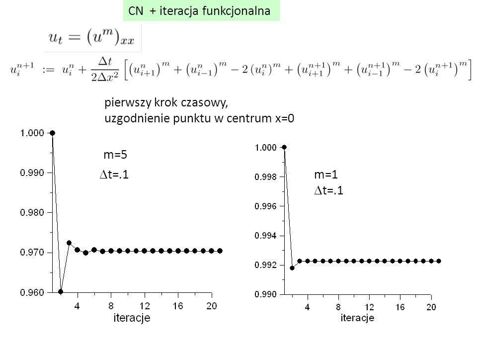 CN + iteracja funkcjonalna