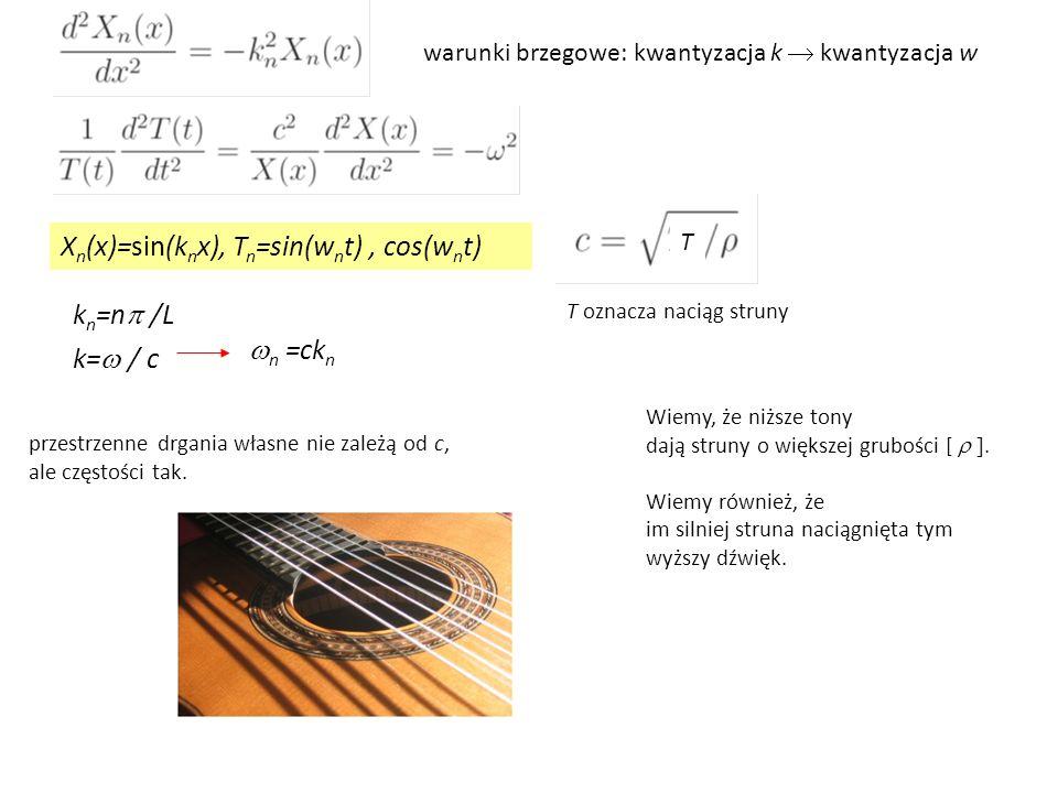Xn(x)=sin(knx), Tn=sin(wnt) , cos(wnt)