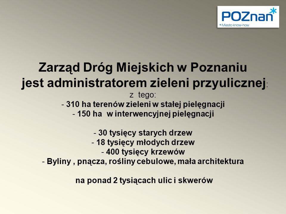 Zarząd Dróg Miejskich w Poznaniu