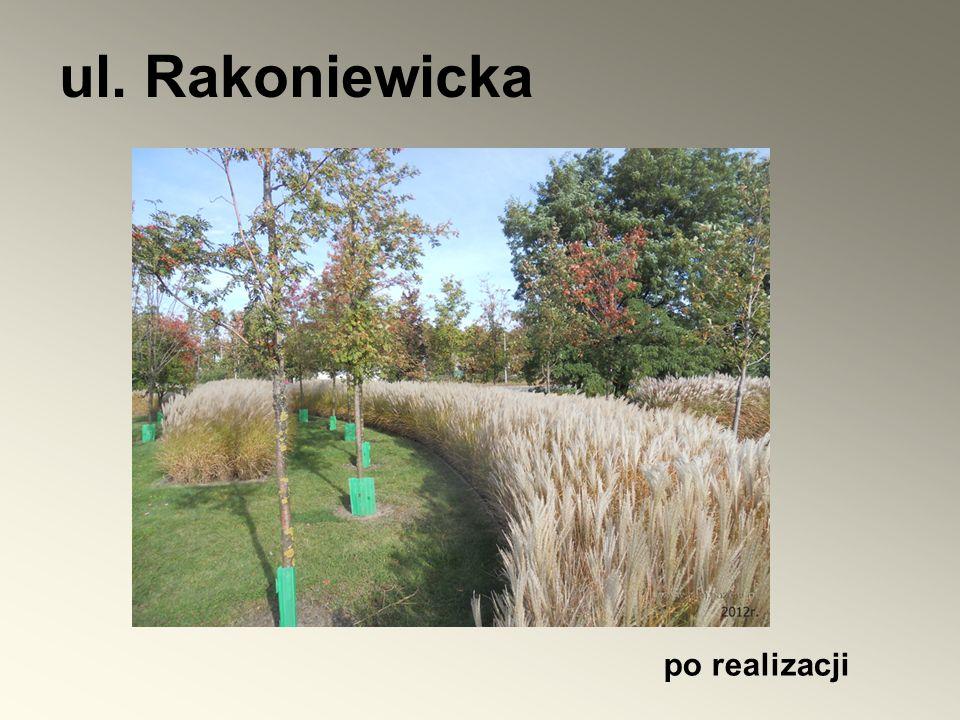 ul. Rakoniewicka po realizacji
