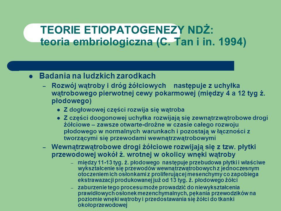 TEORIE ETIOPATOGENEZY NDŻ: teoria embriologiczna (C. Tan i in. 1994)