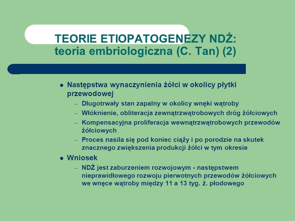 TEORIE ETIOPATOGENEZY NDŻ: teoria embriologiczna (C. Tan) (2)