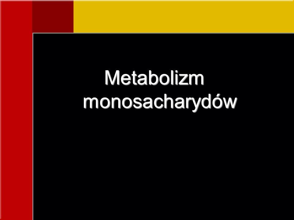 Metabolizm monosacharydów