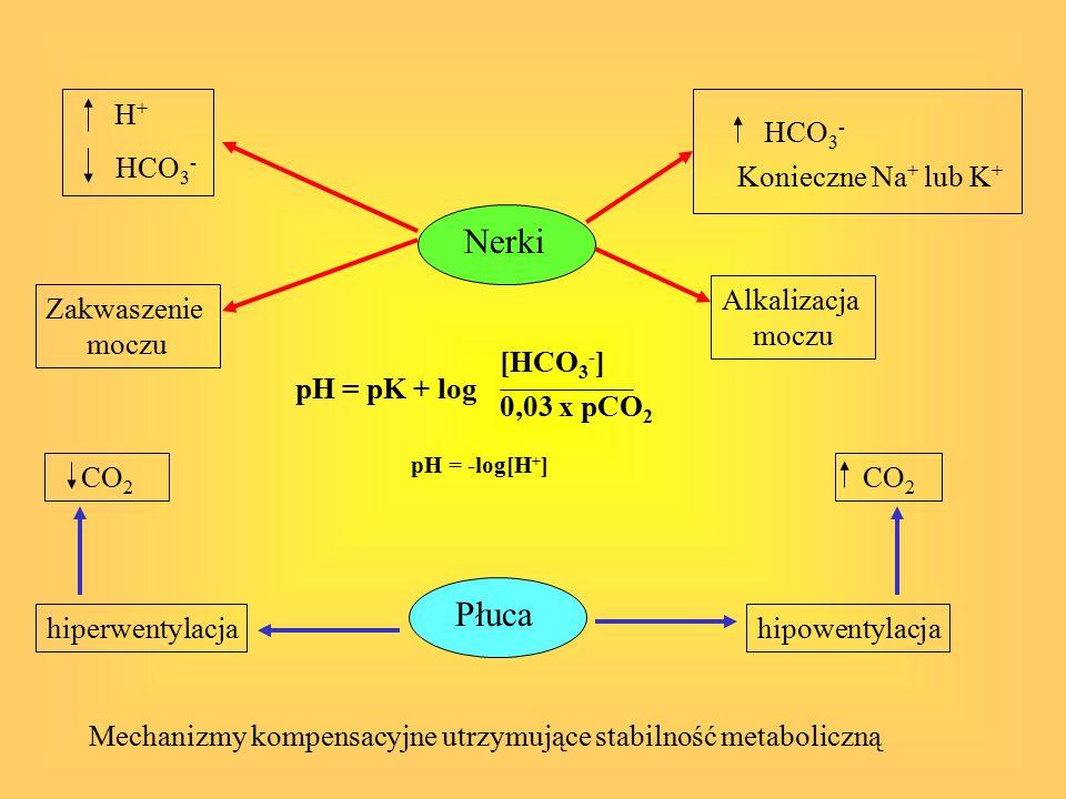 Nerki Płuca H+ HCO3- Konieczne Na+ lub K+ HCO3- Alkalizacja moczu