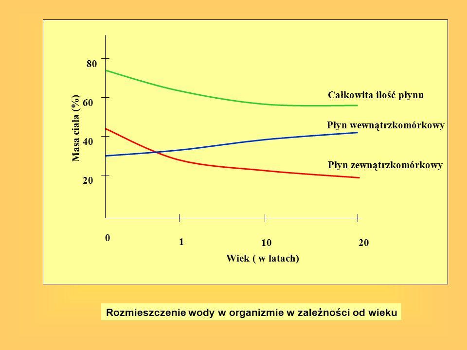 20 40. 60. 80. 1. 10. Wiek ( w latach) Masa ciała (%) Całkowita ilość płynu. Płyn wewnątrzkomórkowy.
