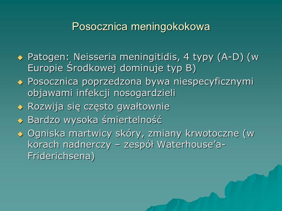 Posocznica meningokokowa