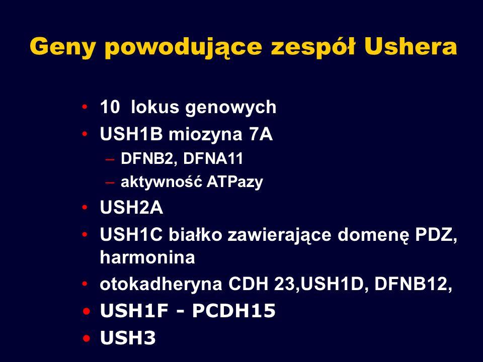Geny powodujące zespół Ushera