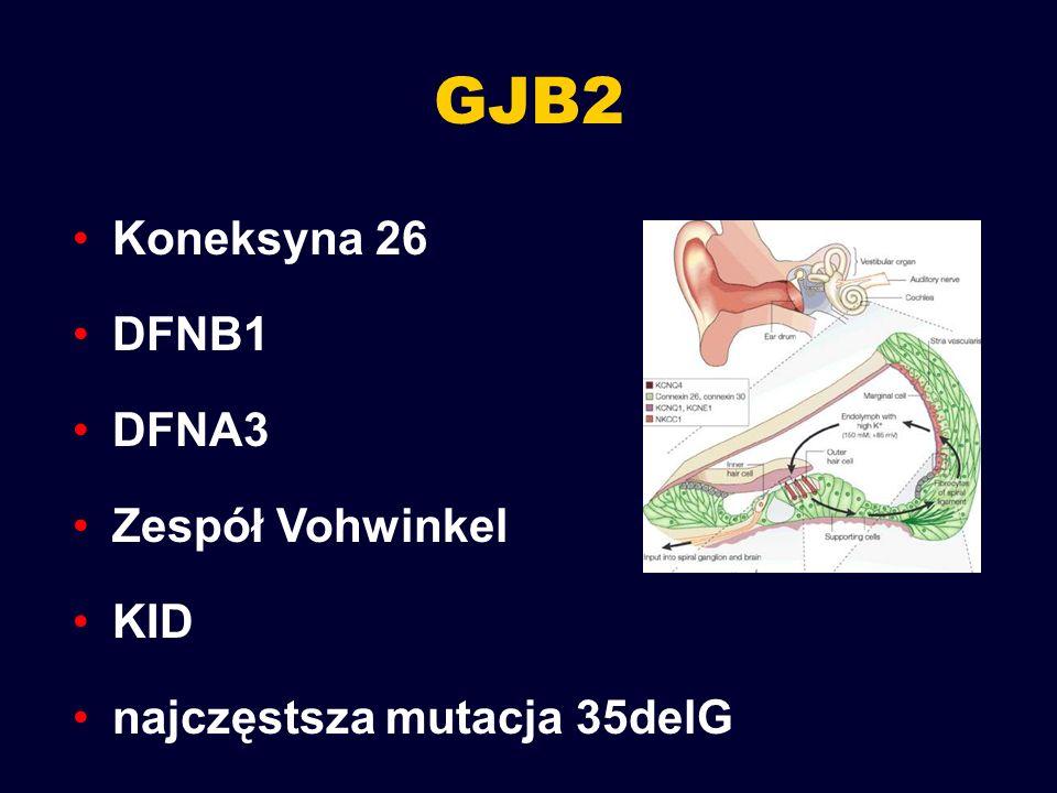 GJB2 Koneksyna 26 DFNB1 DFNA3 Zespół Vohwinkel KID
