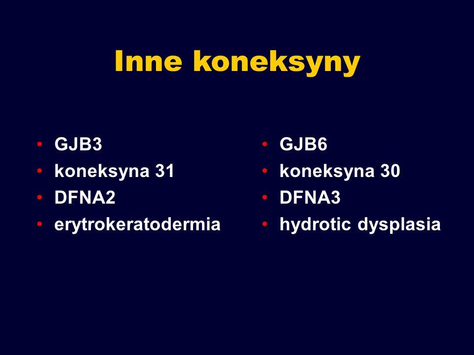 Inne koneksyny GJB3 koneksyna 31 DFNA2 erytrokeratodermia GJB6