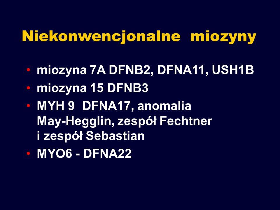 Niekonwencjonalne miozyny