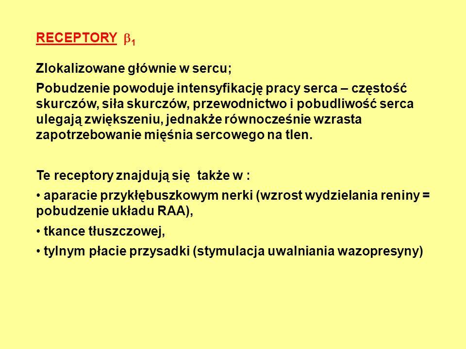 RECEPTORY 1 Zlokalizowane głównie w sercu;