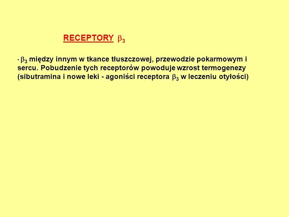 RECEPTORY 3