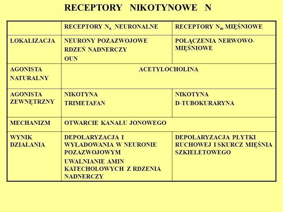 RECEPTORY NIKOTYNOWE N