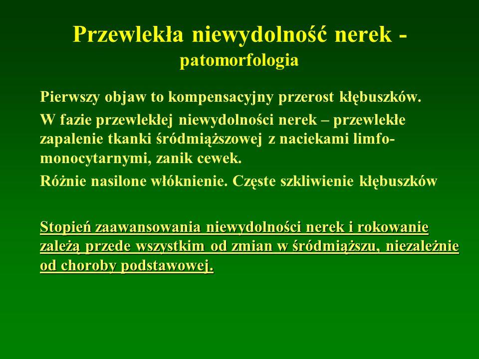 Przewlekła niewydolność nerek - patomorfologia