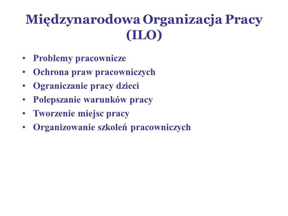 Międzynarodowa Organizacja Pracy (ILO)