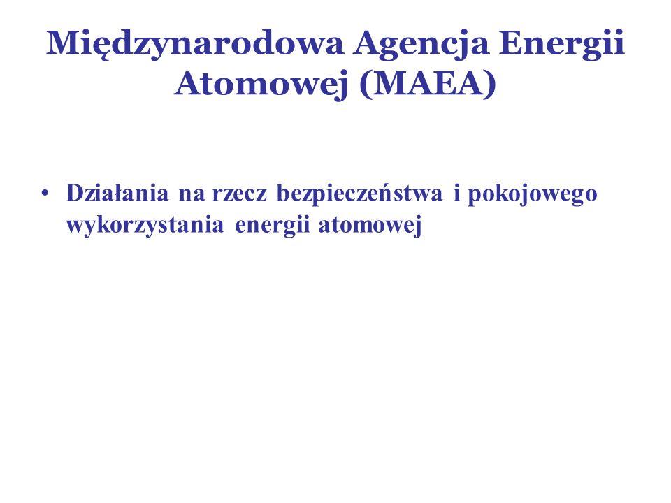 Międzynarodowa Agencja Energii Atomowej (MAEA)
