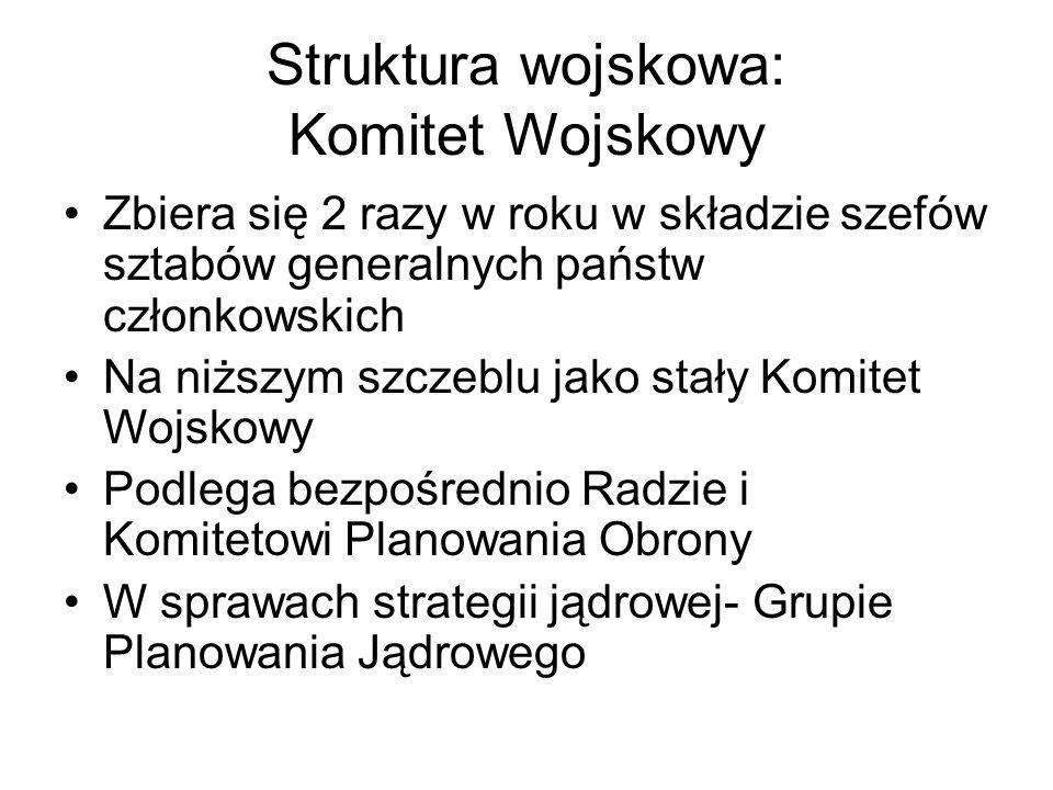 Struktura wojskowa: Komitet Wojskowy