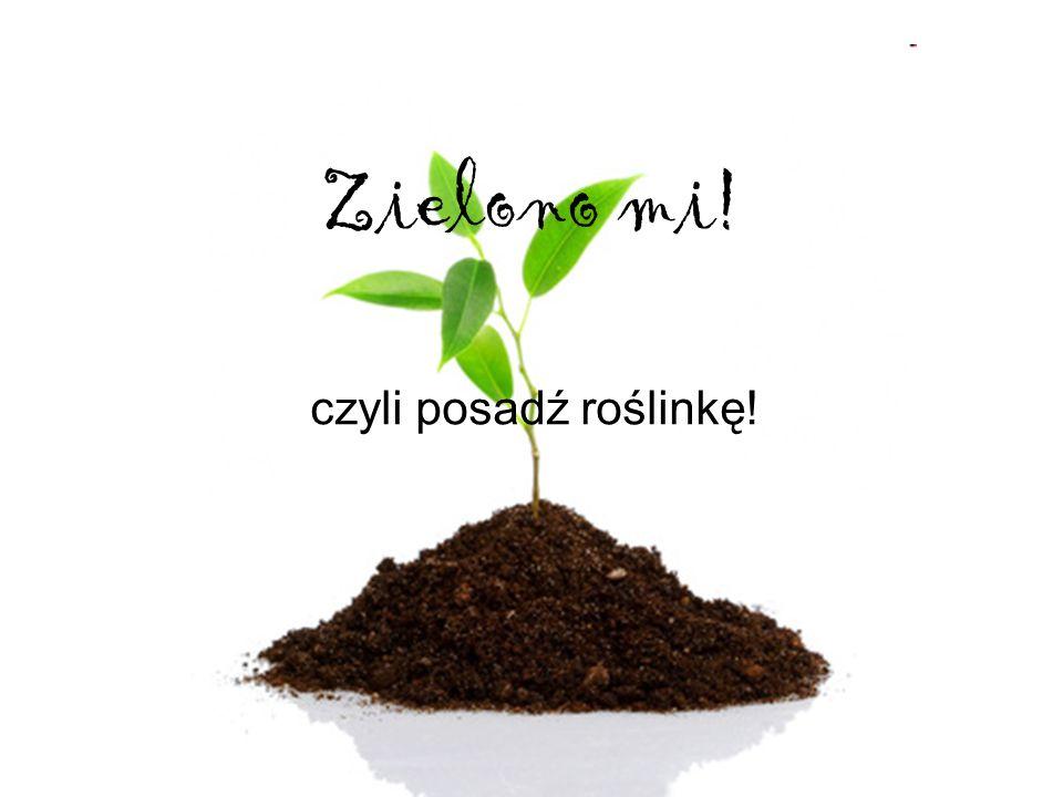 Zielono mi! czyli posadź roślinkę!