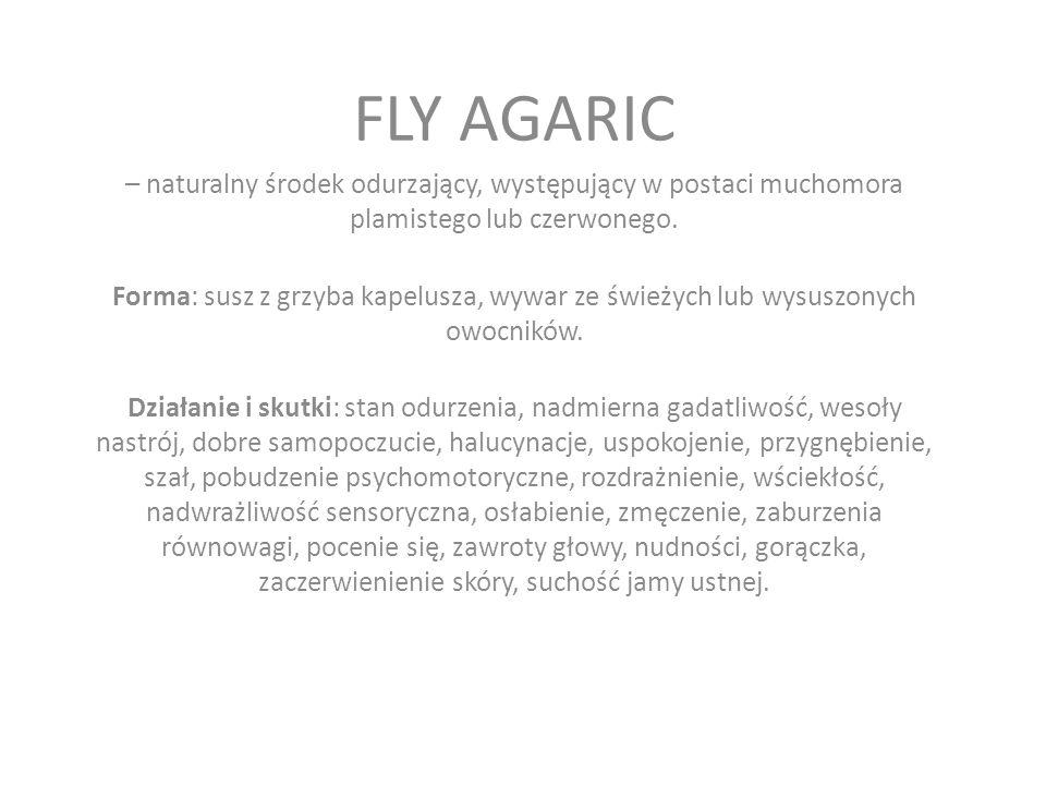 FLY AGARIC – naturalny środek odurzający, występujący w postaci muchomora plamistego lub czerwonego.
