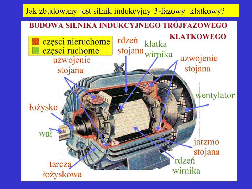 Jak zbudowany jest silnik indukcyjny 3-fazowy klatkowy