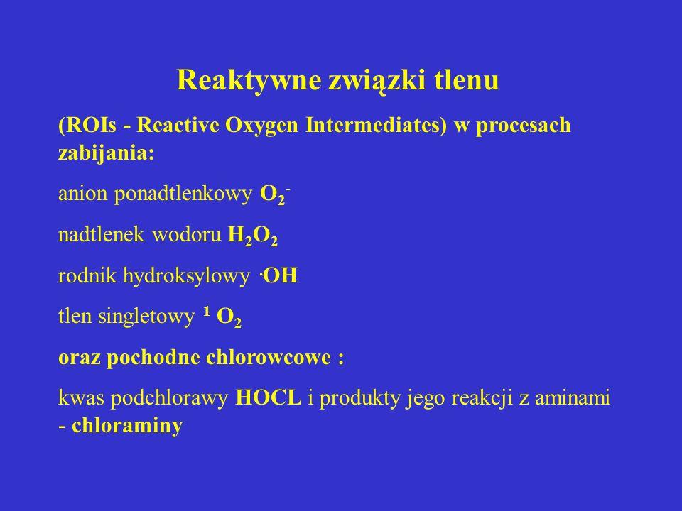Reaktywne związki tlenu