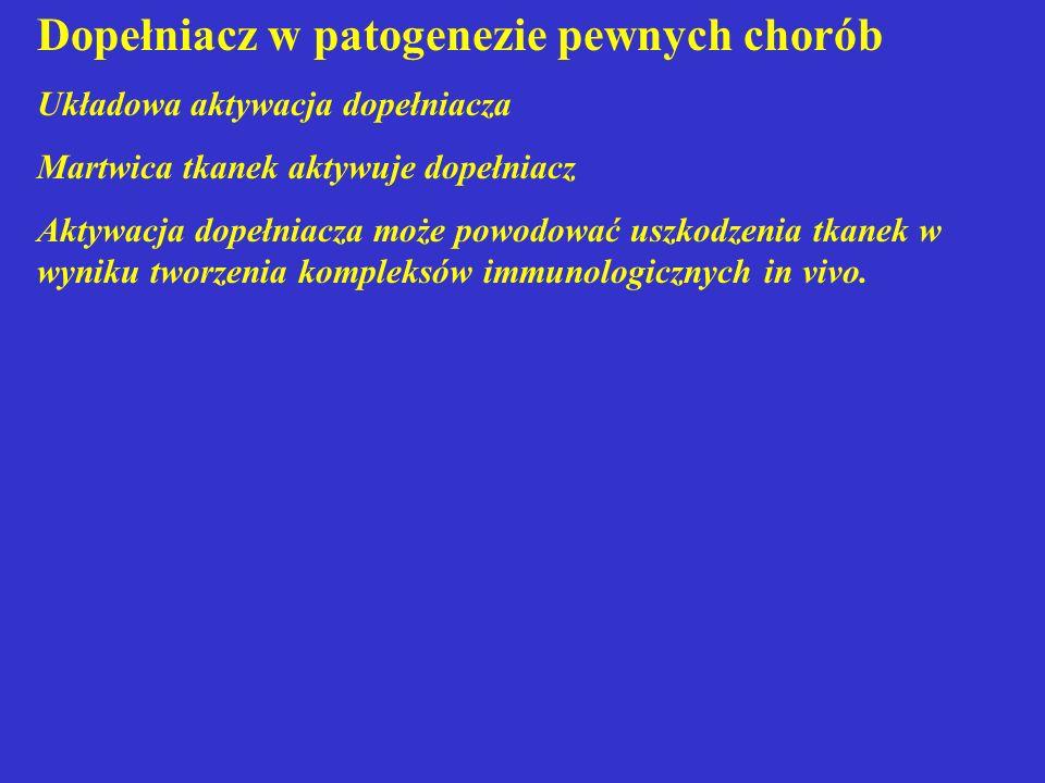 Dopełniacz w patogenezie pewnych chorób