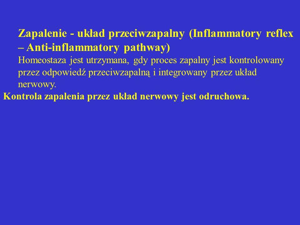 Zapalenie - układ przeciwzapalny (Inflammatory reflex – Anti-inflammatory pathway)