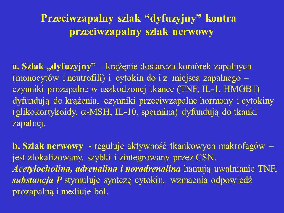 Przeciwzapalny szlak dyfuzyjny kontra przeciwzapalny szlak nerwowy