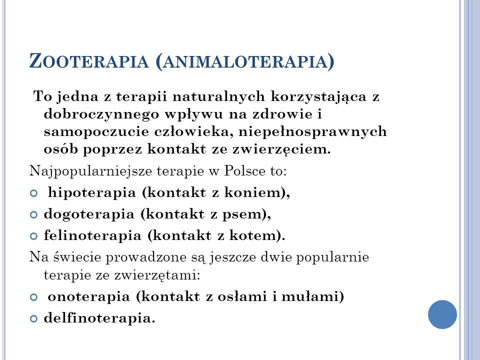 Zooterapia (animaloterapia)