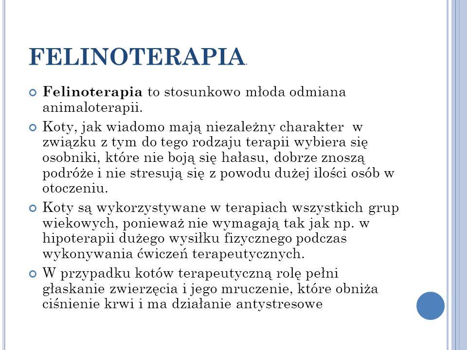 FELINOTERAPIA. Felinoterapia to stosunkowo młoda odmiana animaloterapii.