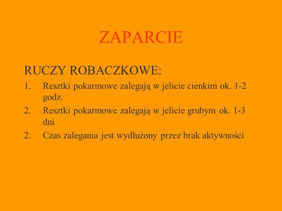 ZAPARCIE RUCZY ROBACZKOWE: