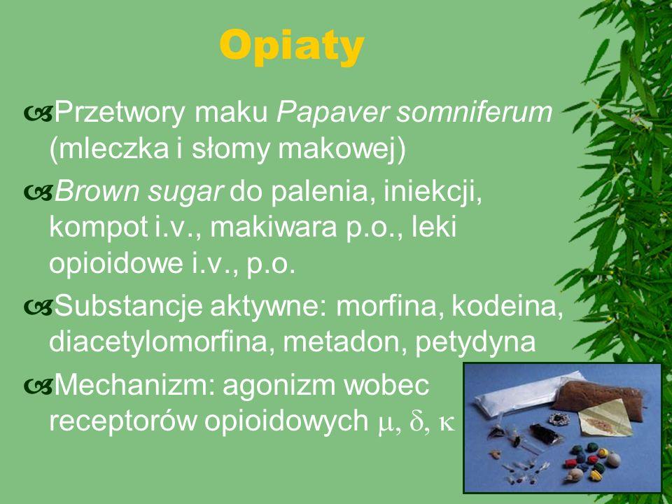 Opiaty Przetwory maku Papaver somniferum (mleczka i słomy makowej)