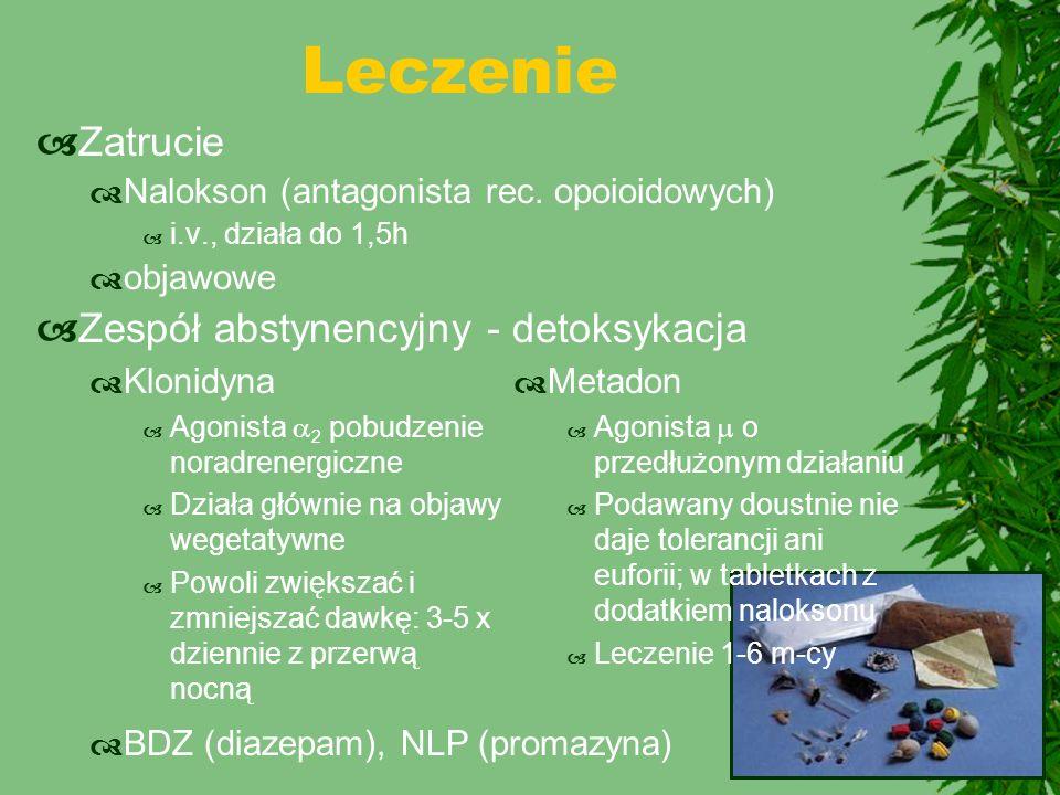 Leczenie Zatrucie Zespół abstynencyjny - detoksykacja