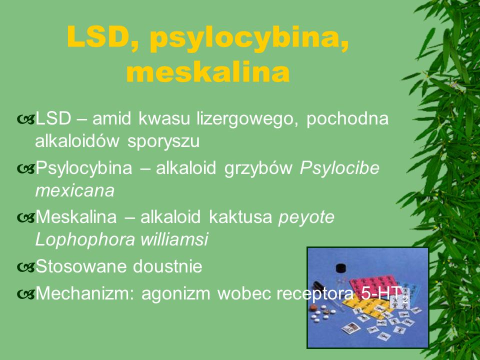 LSD, psylocybina, meskalina