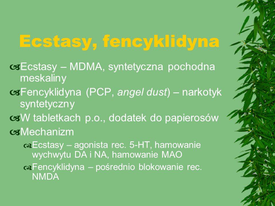 Ecstasy, fencyklidyna Ecstasy – MDMA, syntetyczna pochodna meskaliny
