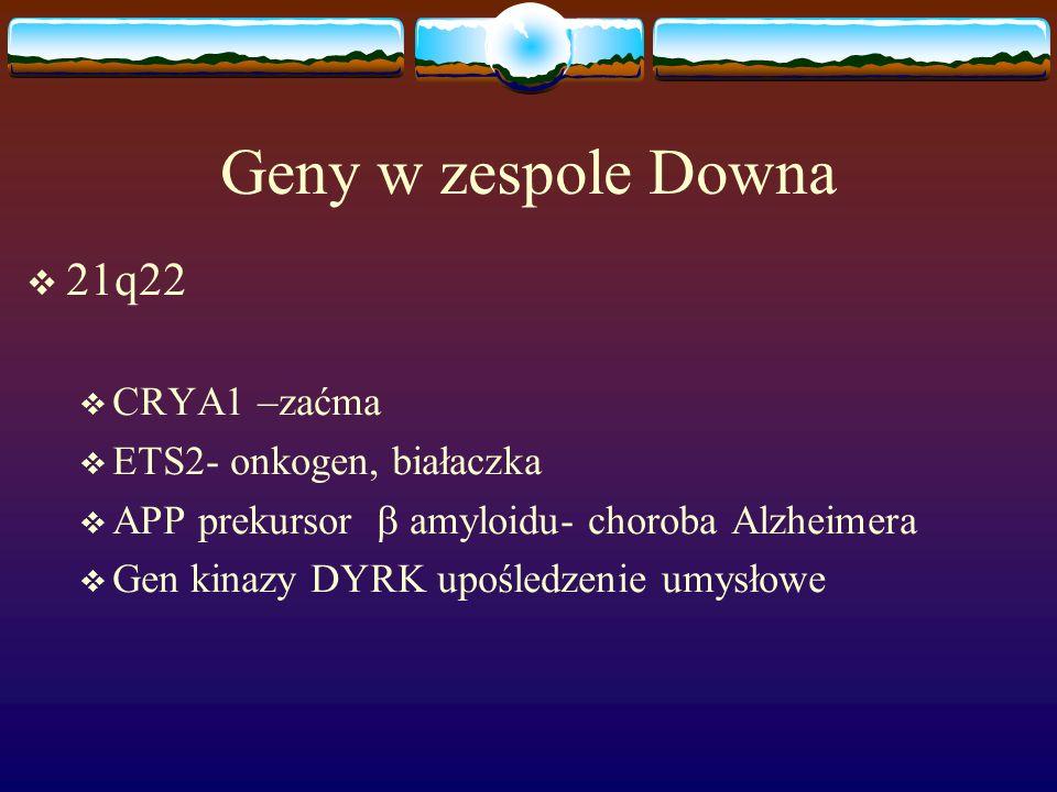 Geny w zespole Downa 21q22 CRYA1 –zaćma ETS2- onkogen, białaczka