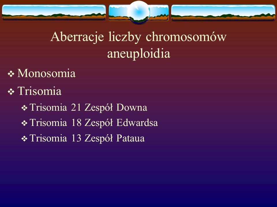 Aberracje liczby chromosomów aneuploidia