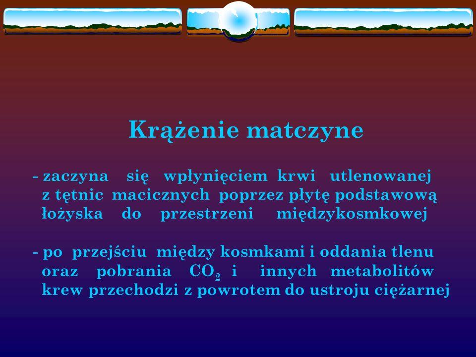 Krążenie matczyne - zaczyna się wpłynięciem krwi utlenowanej z tętnic macicznych poprzez płytę podstawową łożyska do przestrzeni międzykosmkowej - po przejściu między kosmkami i oddania tlenu oraz pobrania CO2 i innych metabolitów krew przechodzi z powrotem do ustroju ciężarnej