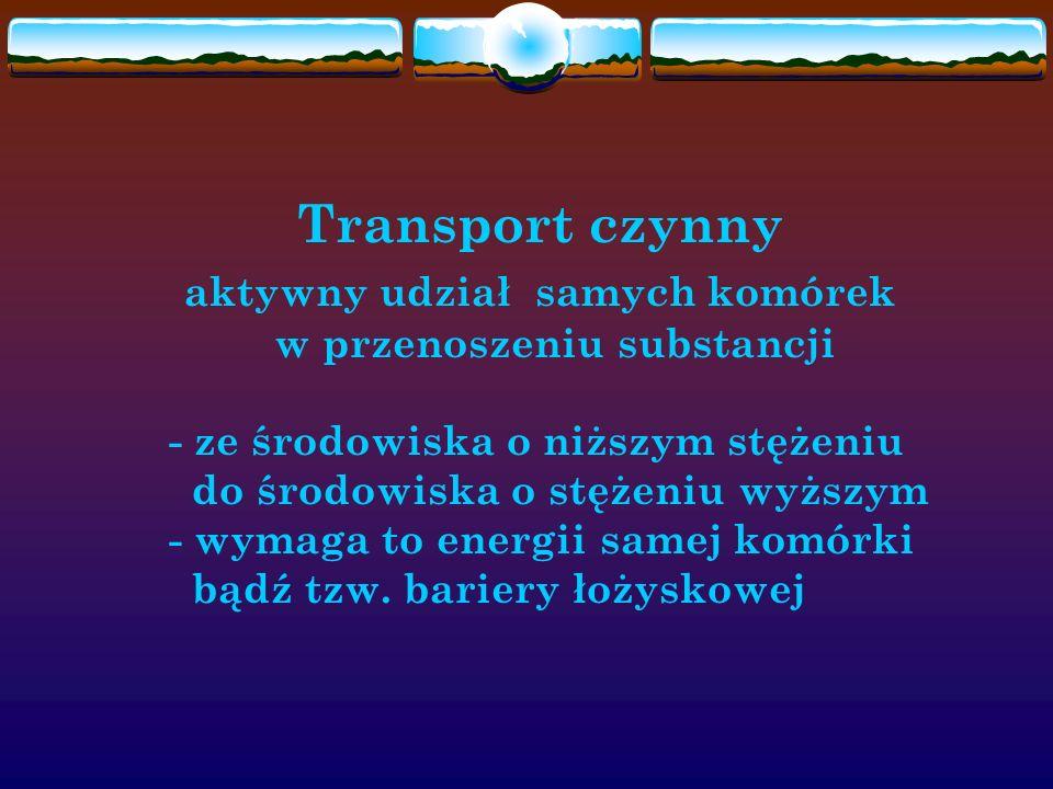 Transport czynny. aktywny udział samych komórek