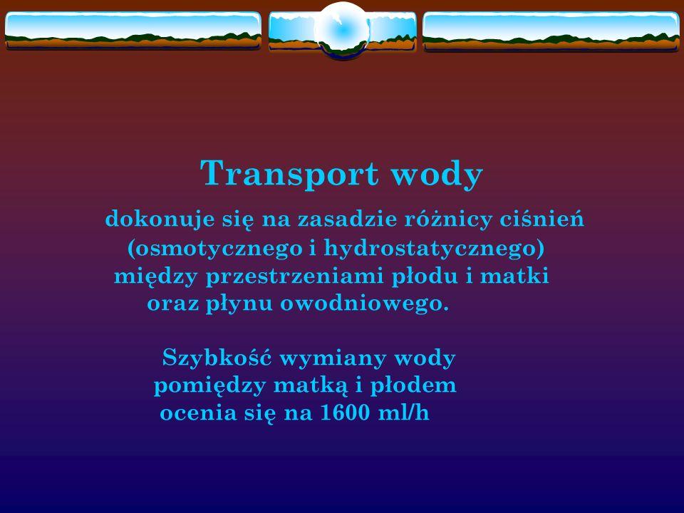 Transport wody dokonuje się na zasadzie różnicy ciśnień (osmotycznego i hydrostatycznego) między przestrzeniami płodu i matki oraz płynu owodniowego.